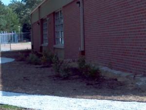 outdoor classroom 3